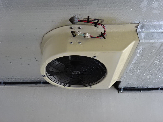 いすゞ H26 フォワード ワイド 低温冷凍車 格納PG  画像13